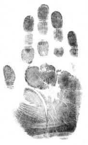 l_biometric attendance